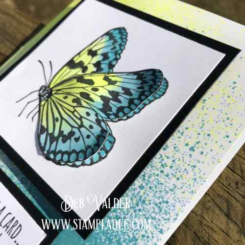 FSJ Pop up Butterfly
