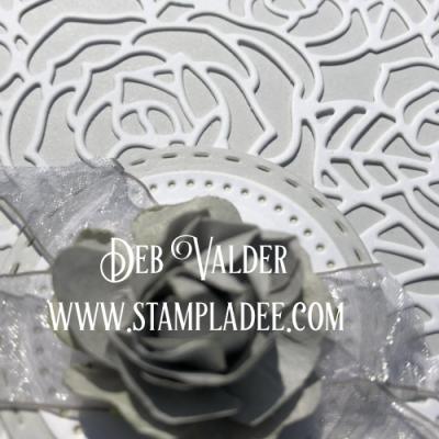 Product Spotlight Circle Around Die with Deb Valder & FSJ