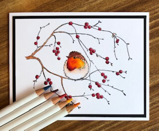 Spring Bird in a tree twig with berries and watercolor pencils