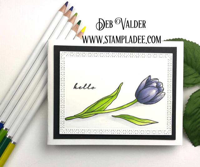 Single watercolored tulip card