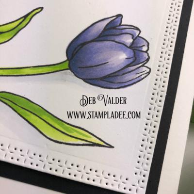 Learn to Watercolor with Watercolor Pencils #1 – Deb Valder