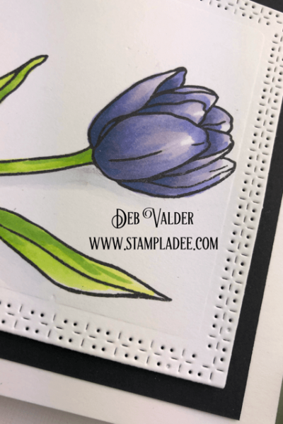 Learn to watercolor with watercolor pencils