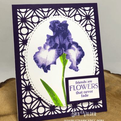 Iris are in Bloom with Deb Valder