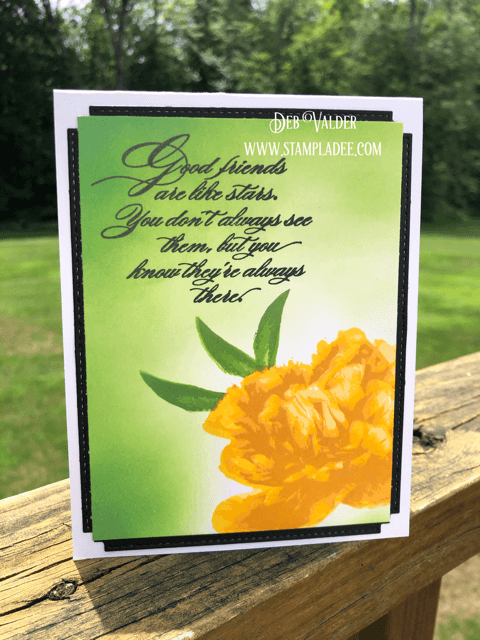 This is WOW Grand Peony card is a multi-level stamp set that is so realistic in our Teaspoon of Fun Shoppe.