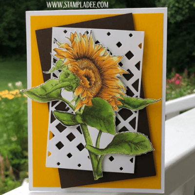 A Little Bunch of Sunflowers A Lot of Sunshine with Deb Valder