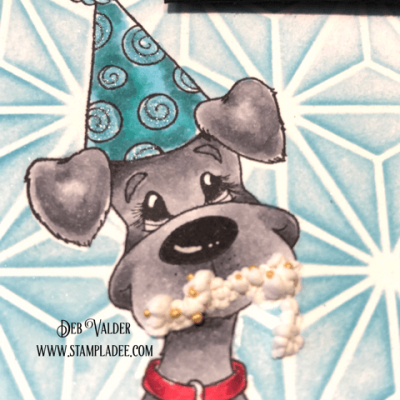 Doggone-It, Another Birthday with Deb Valder