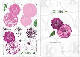 Zinnia. All products can be found in our Teaspoon of Fun Shoppe.