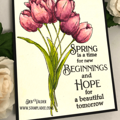 Spring and New Beginnings with Deb Valder