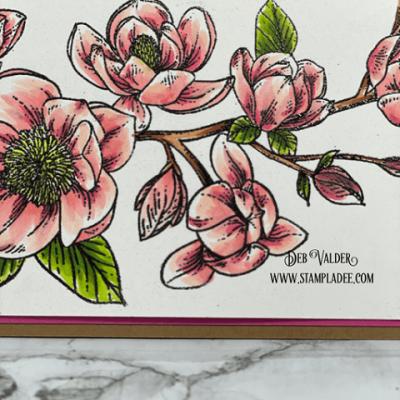 New Spring Magnolia Card Kit with Deb Valder