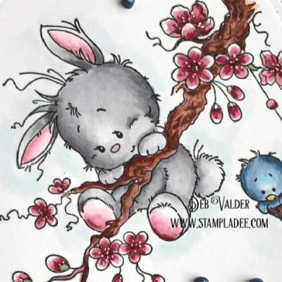 Hang On Spring is Here with Deb Valder