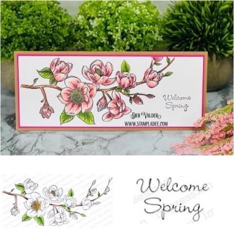 Spring Magnolia Card Kit is the newest kit in our Shoppe. All products can be found in our Teaspoon of Fun Shoppe.