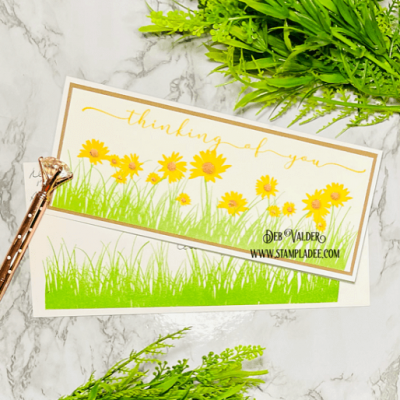 Rolling Meadow of Wildflowers with Deb Valder